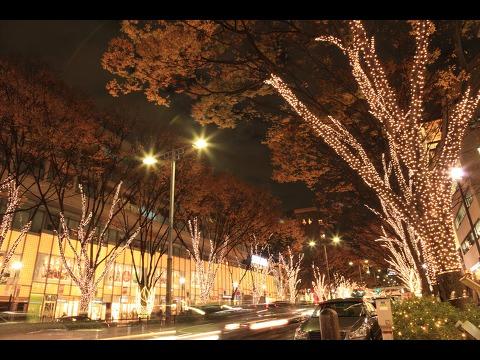 表参道イルミネーション 2013