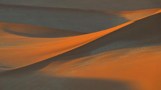 ナミブ砂漠の画像 p1_5