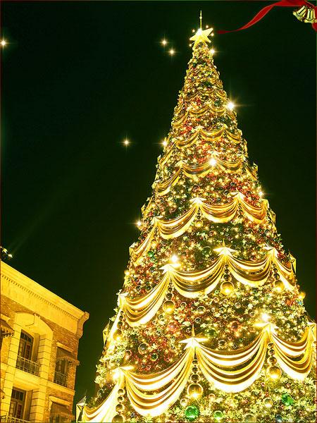 ワンダークリスマス
