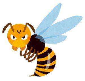 スズメバチに2回刺されたら危険なの?刺されたときの対処は?
