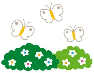 沈丁花(ジンチョウゲ)香りが強い春に咲く花の花言葉は?