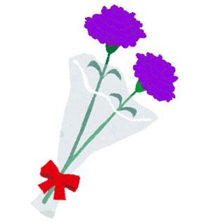 母の日に青いカーネーションを~ムーンダストの花言葉、種類は?