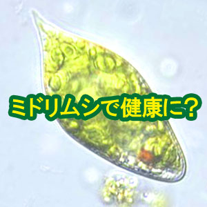 ミドリムシを食べて健康に?ユーグレナサプリの効果とは?